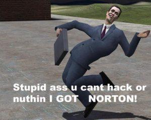 I got Norton meme
