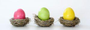 A single egg in each nest