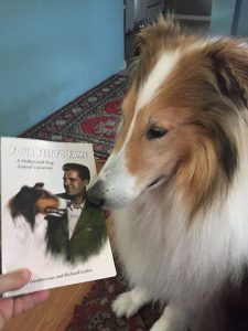 """Collie dog sniffing """"Four Feet to Fame"""" book."""