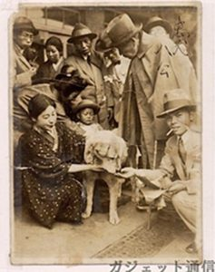 Old photo of Japanese Akita dog Hachiko, surrounded by people.